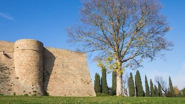Urbinos