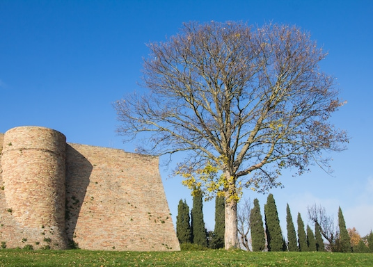 Urbino, Taliansko