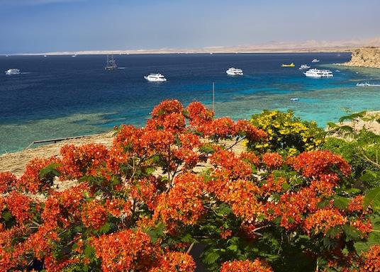 ראס אום סיד, מצרים