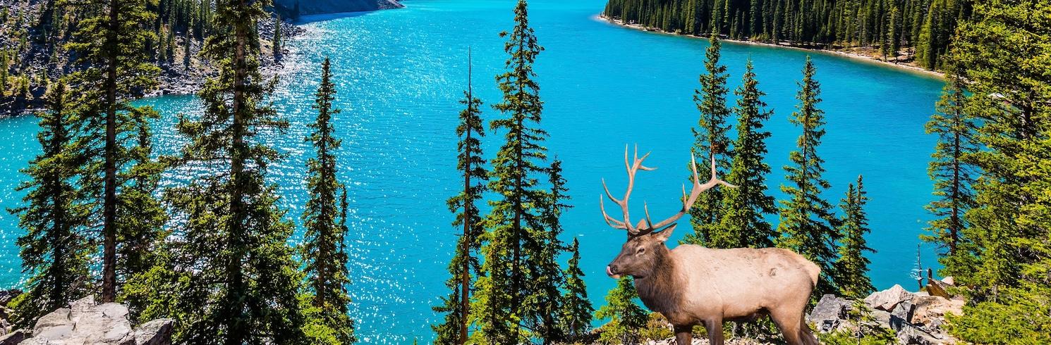 Deer Lake, Newfoundland (Újfundland) és Labrador, Kanada