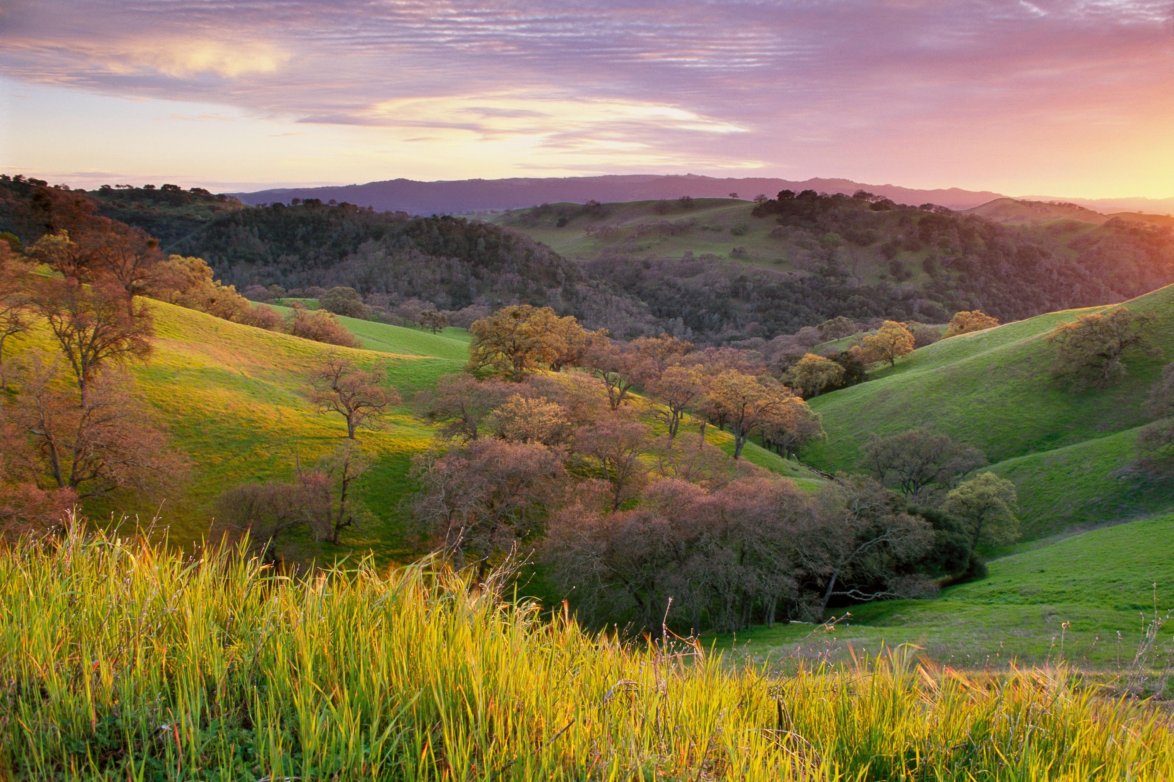 Contra Costa County, California, United States of America