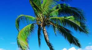 卡瑪歐力海灘公園