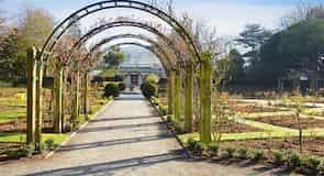 حديقة هاغلي