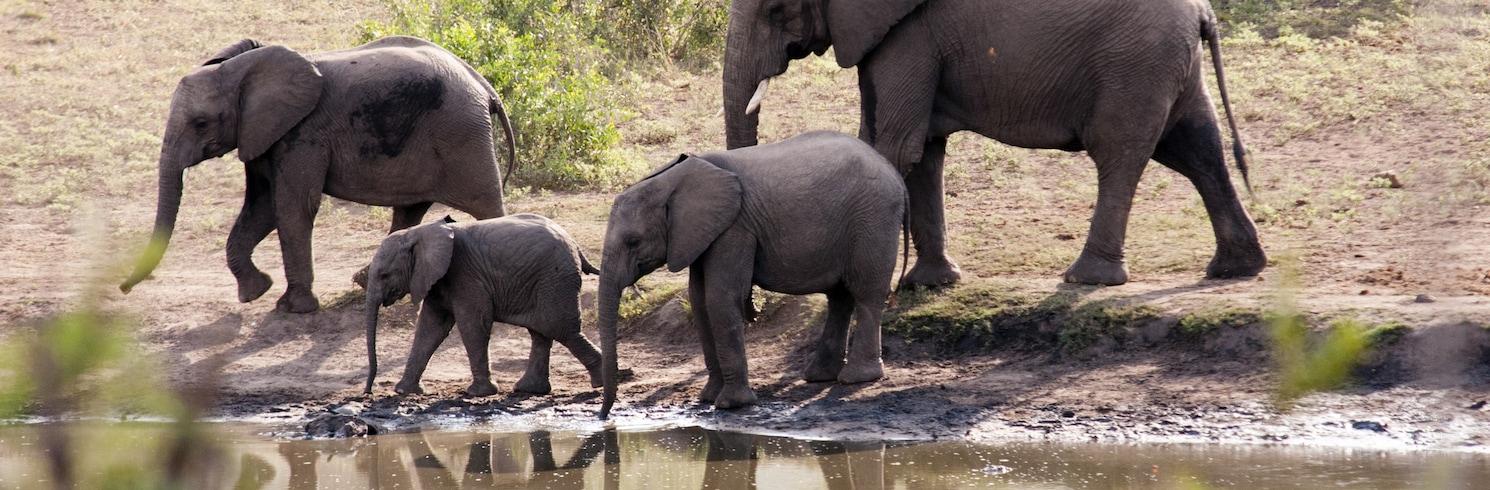 Marloth Park, Afrique du Sud