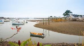 Rye Harbori looduspark