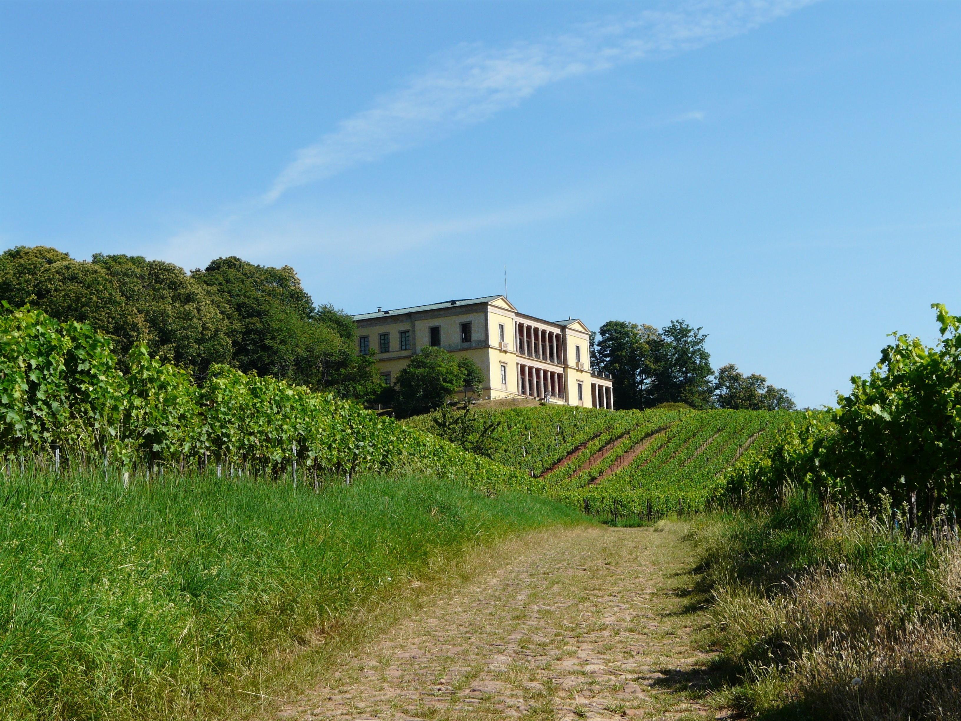 Südliche Weinstraße, Rhineland-Palatinate, Germany