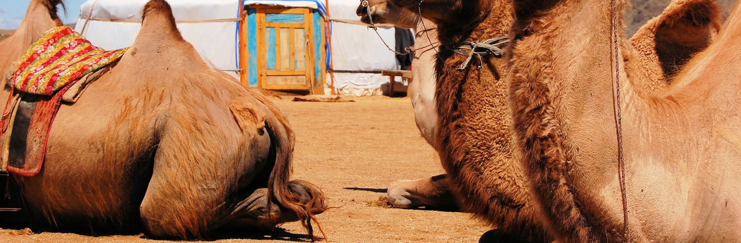 Dalanzadgad, Mongoolia