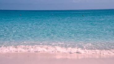 粉色沙滩/