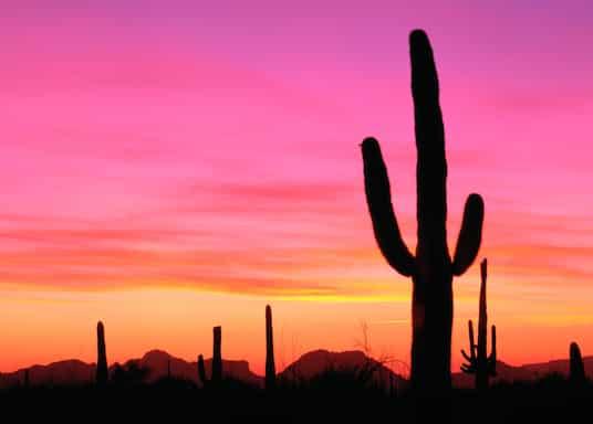 Ajo, Arizona, Estados Unidos