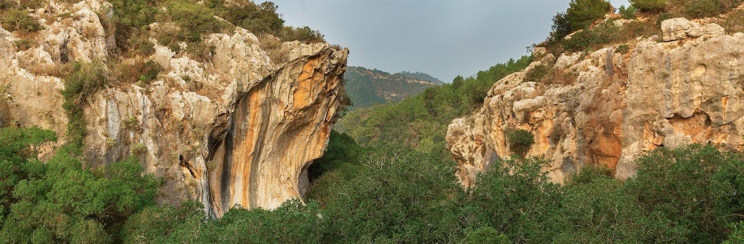 Carmel Forest, Israel