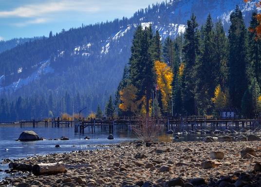 Mountain View, Kaliforniya, Birleşik Devletler