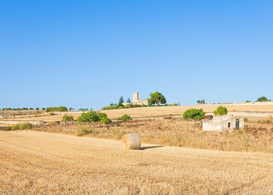 Santa Margalida, Spanien
