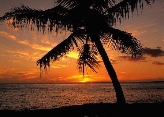 纳皮里-霍诺科瓦伊, 夏威夷, 美国