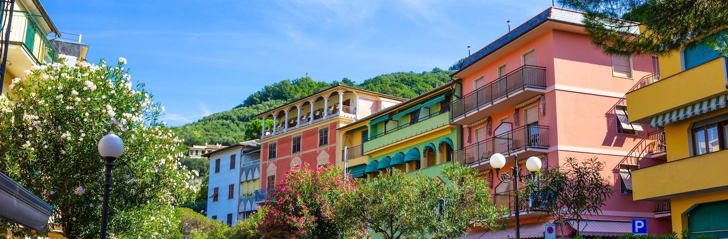 莫內里阿, 義大利