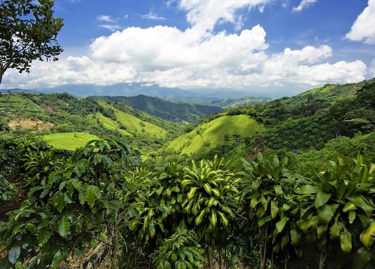 San Jose (tỉnh), Costa Rica