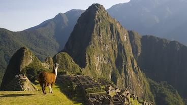 Cusco/