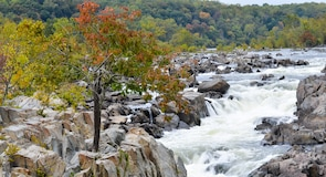 Great Falls Park (fossefall)