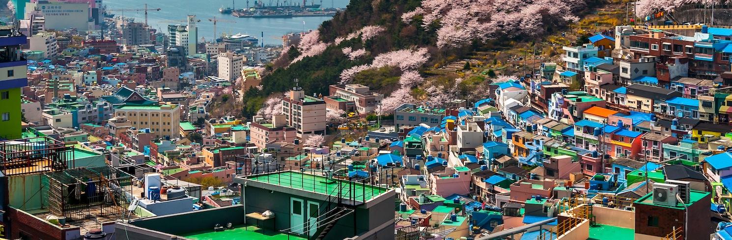 Saha, Kórejská republika