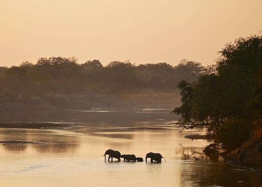 South Luangwa Nationaal Park, Zambia