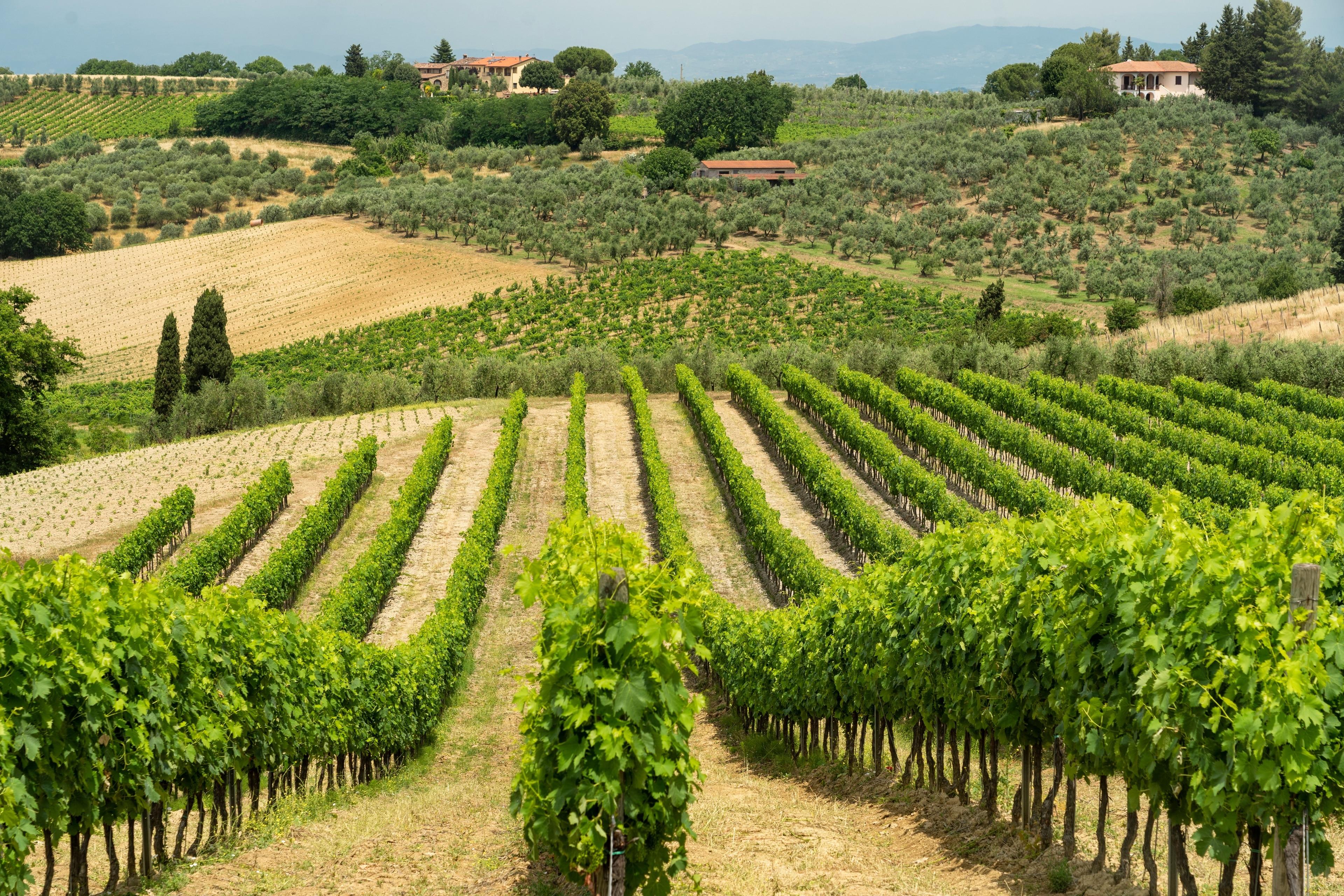 Gambassi Terme, Tuscany, Italy