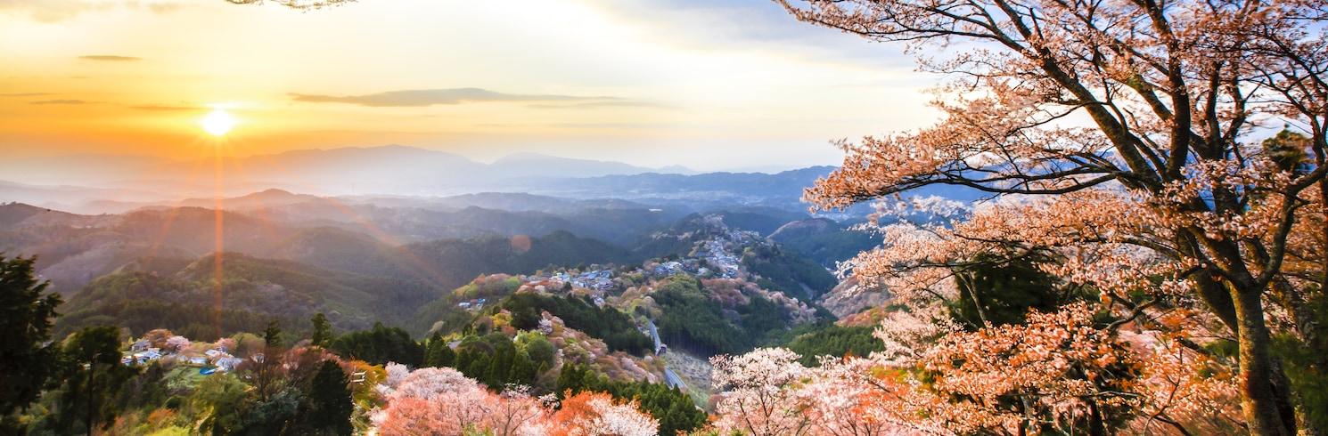 Yoshino, Japonya