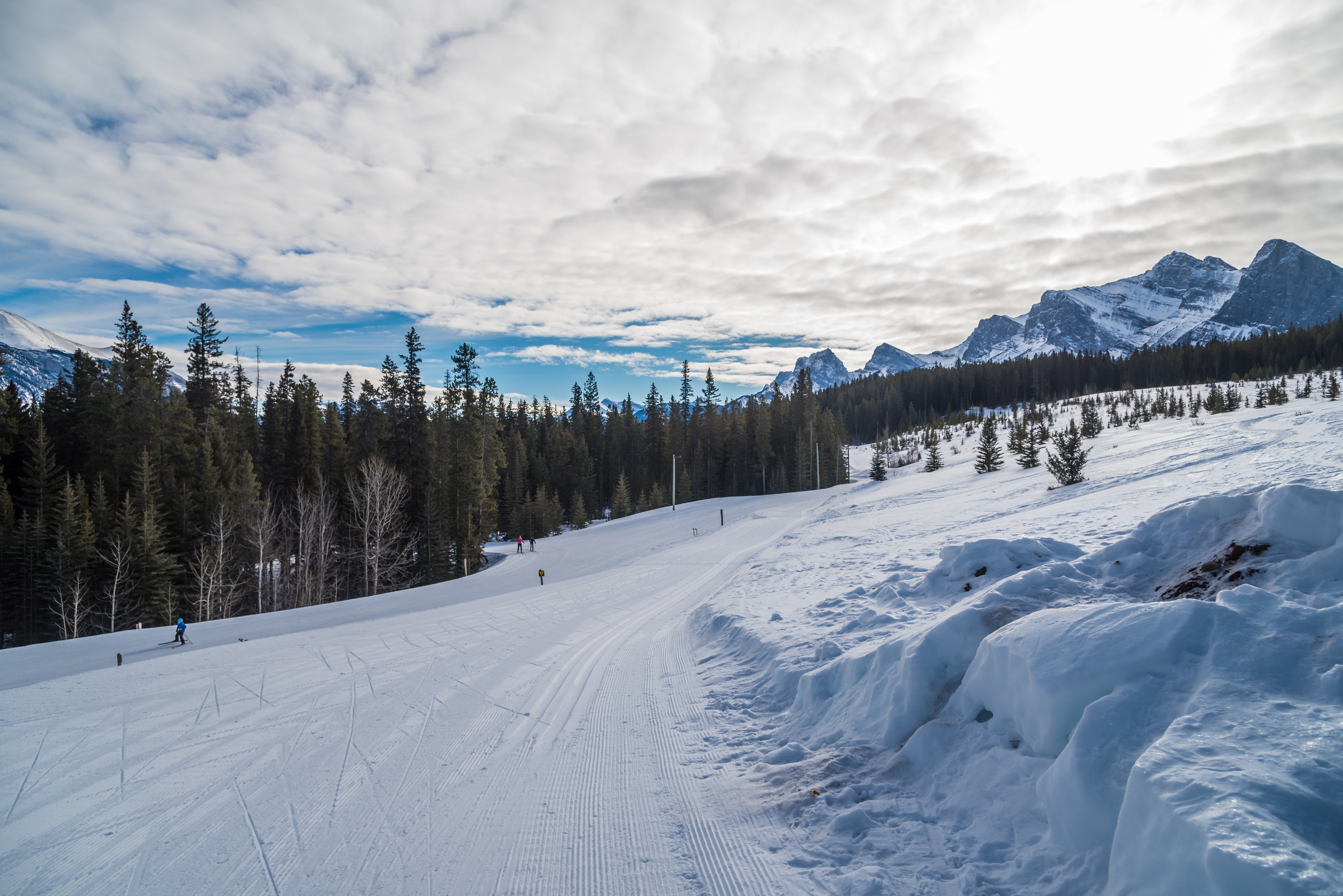 Canmore Nordic Centre Provincial Park, Harvie Heights, Alberta, Canada
