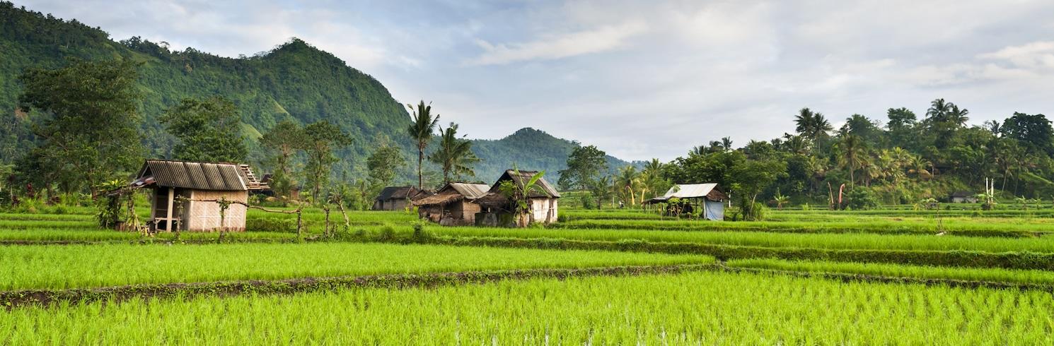 Sidemen, Indonesia