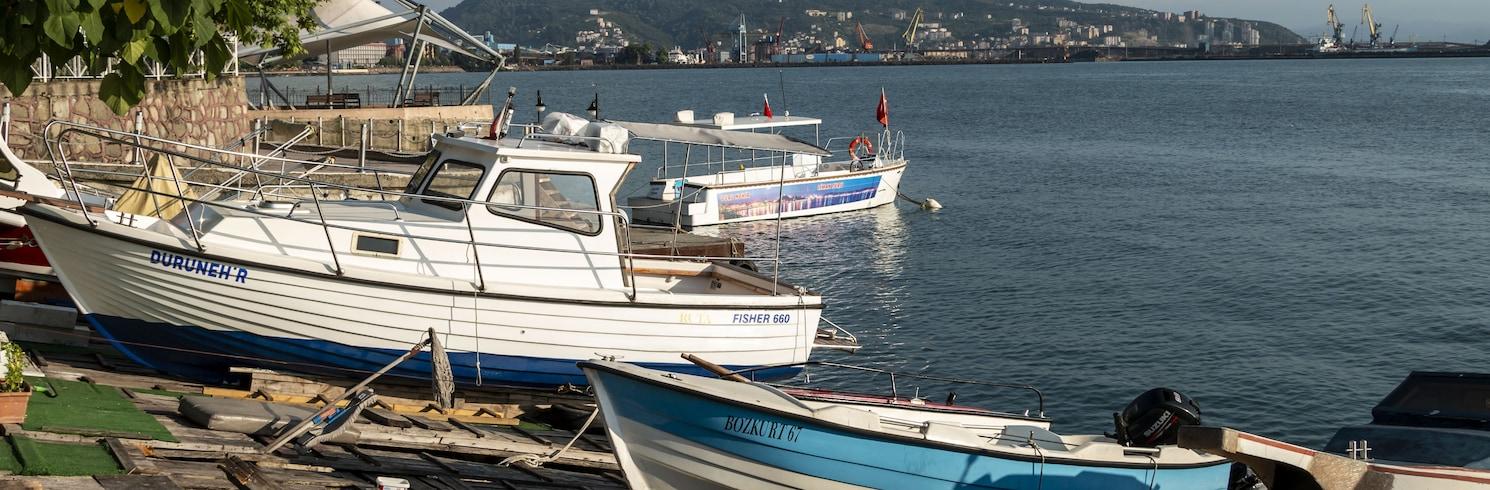 Karadeniz Ereğli, Turkki