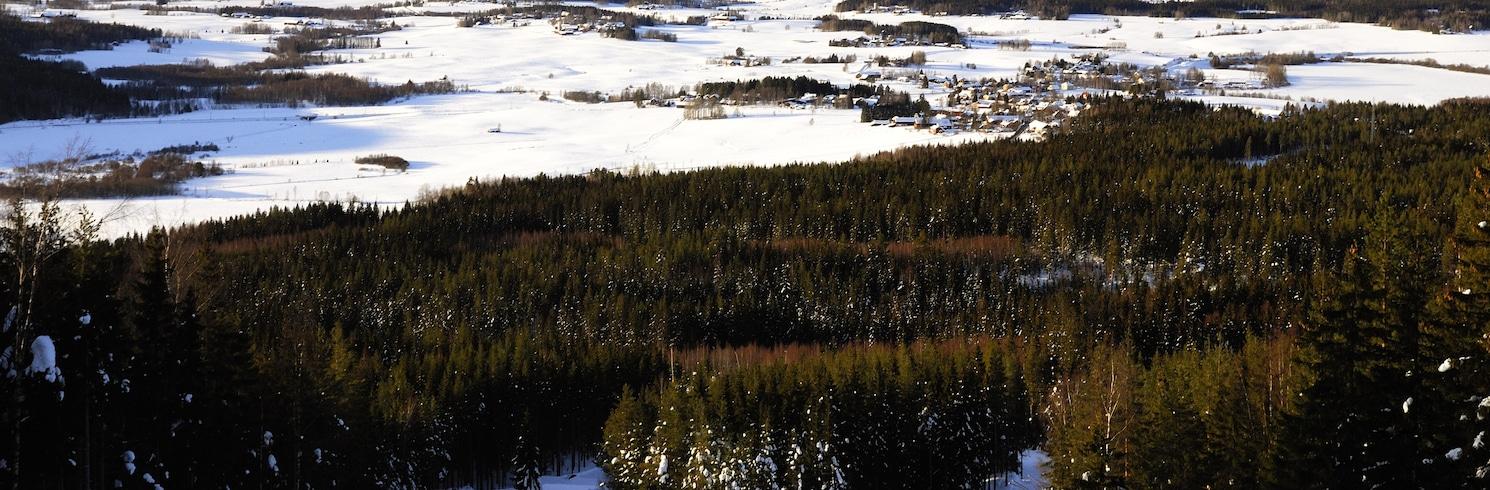 Borlange, Suécia