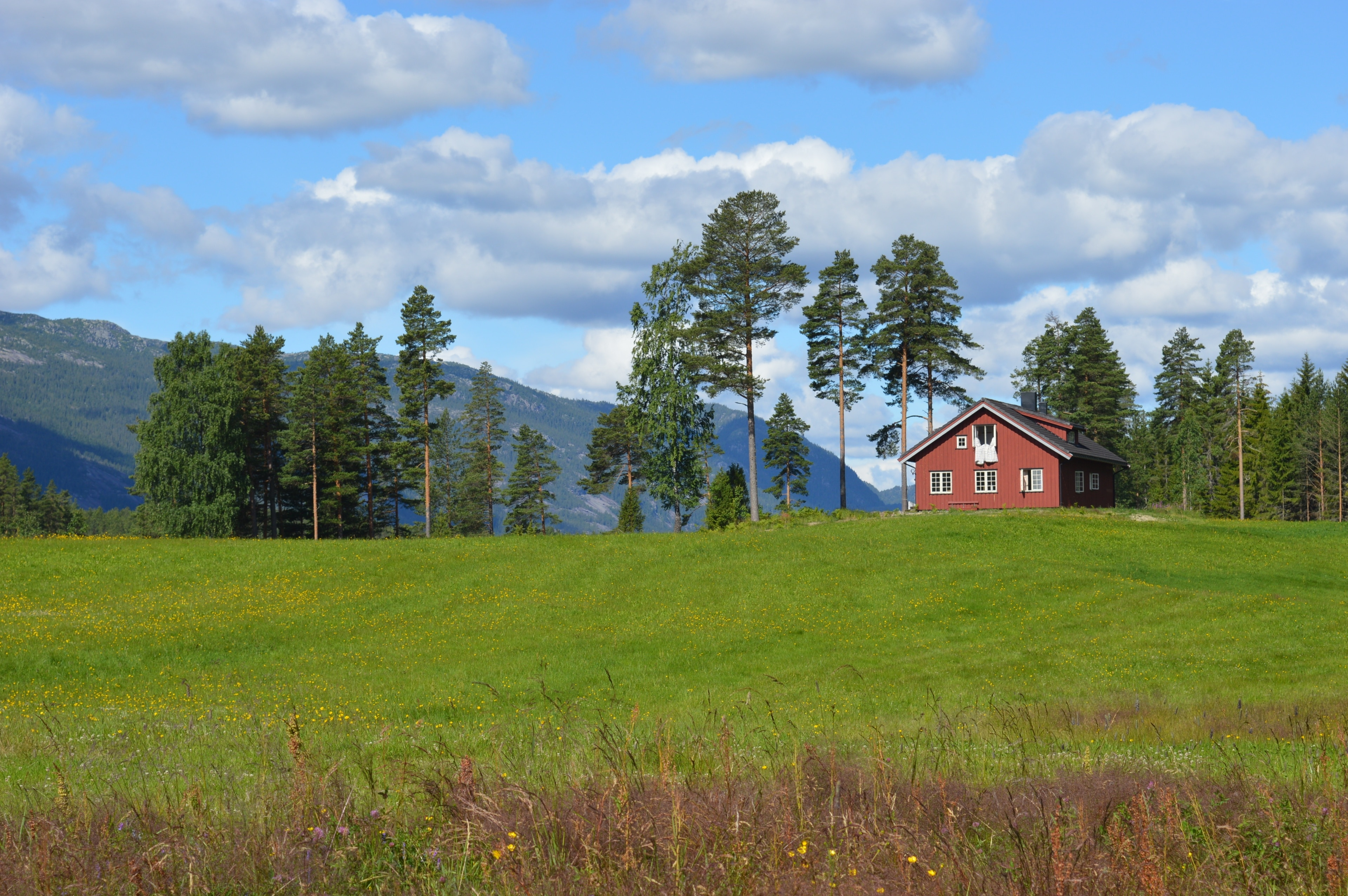 Kviteseid, Vestfold og Telemark, Noruega