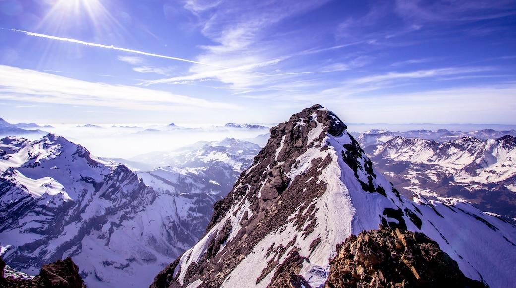 Geleira de Aletsch