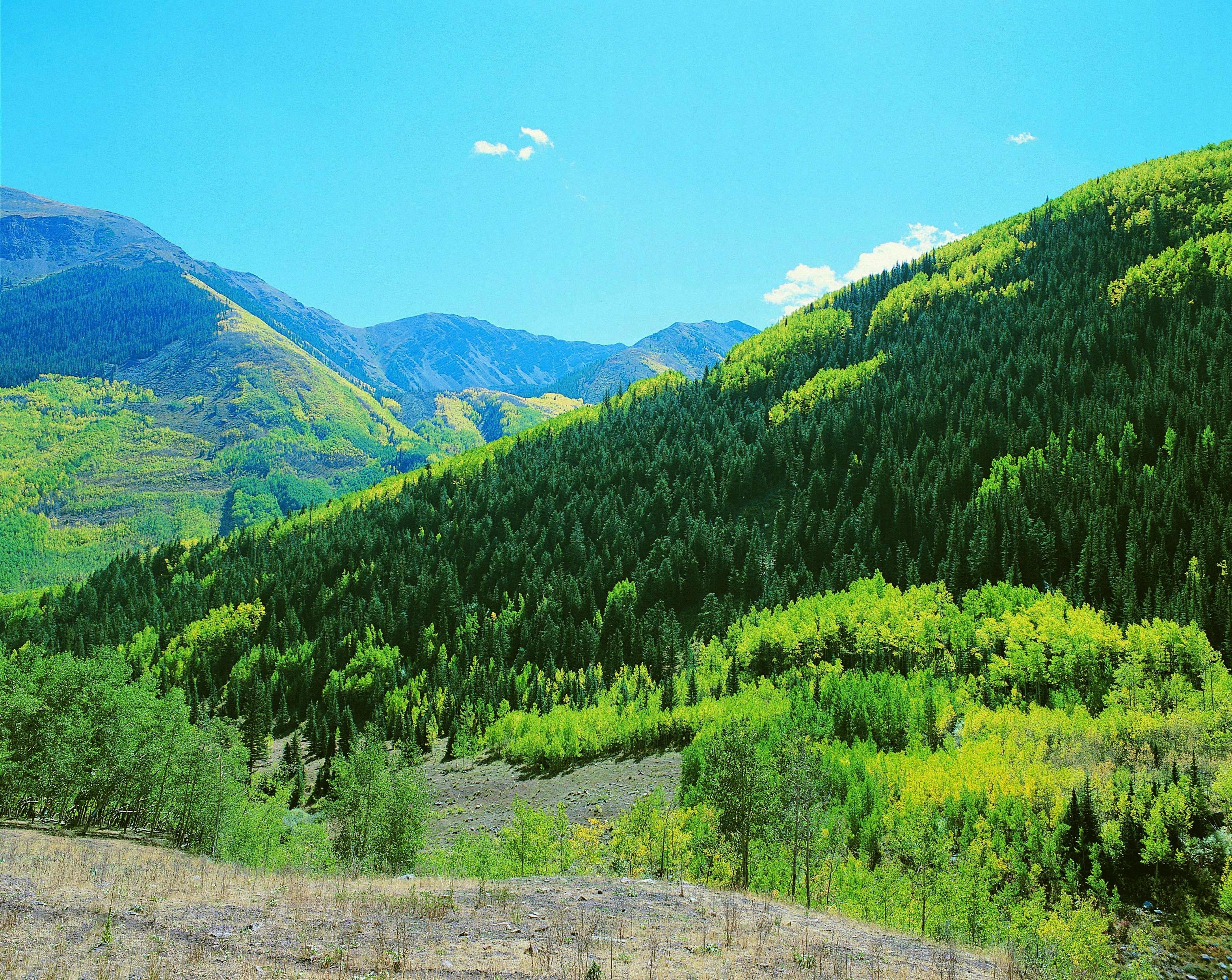 Ashcroft, Colorado, United States of America