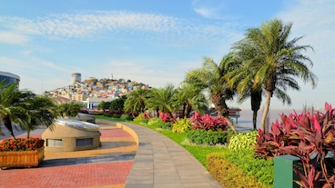Guayaquil/