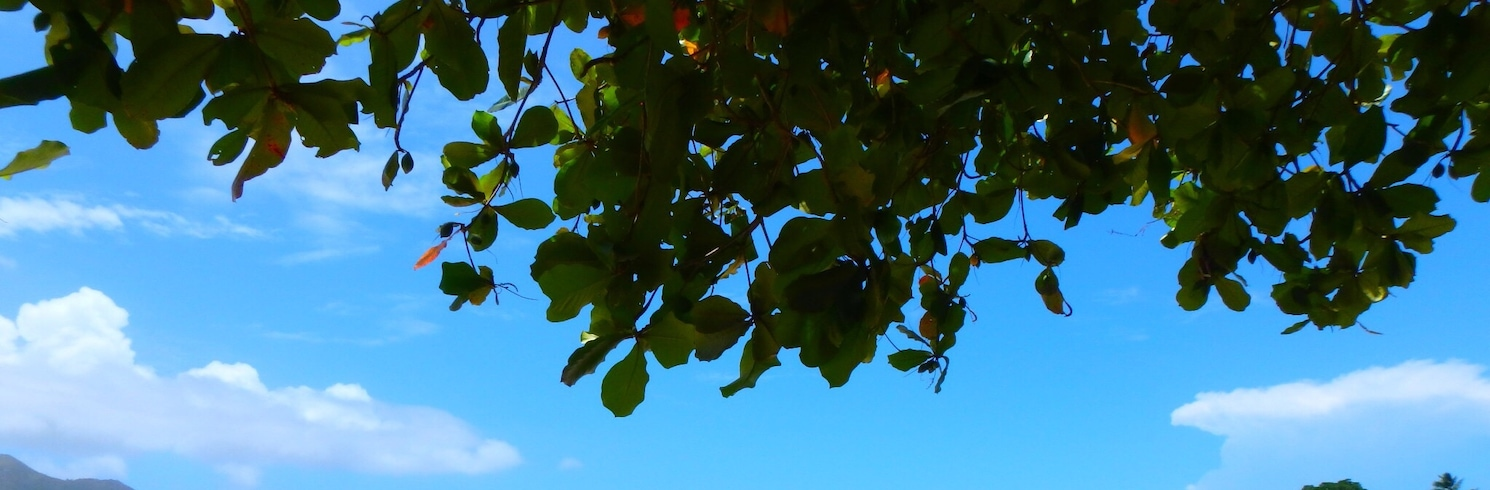 Samana (and vicinity), Dominican Republic