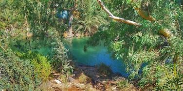Jordan River and supposed baptismal site.