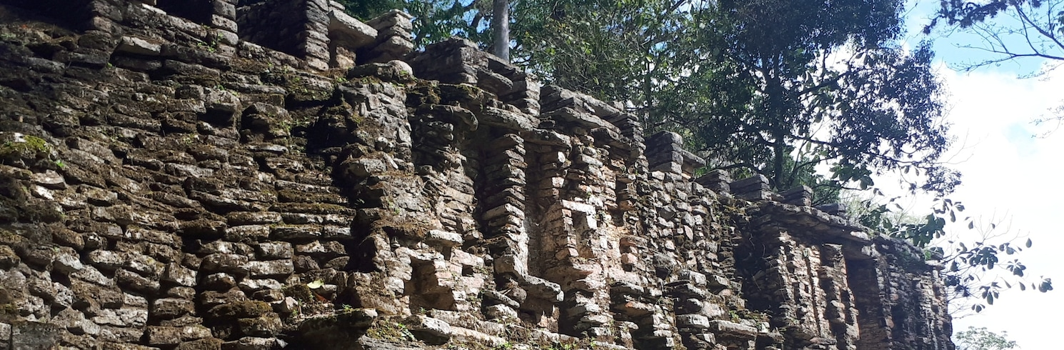 奧科辛戈, 墨西哥