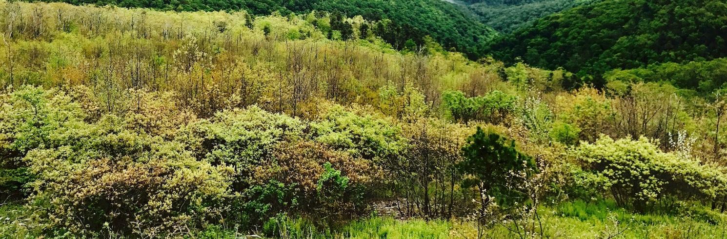 Crozet, Virginia, United States of America