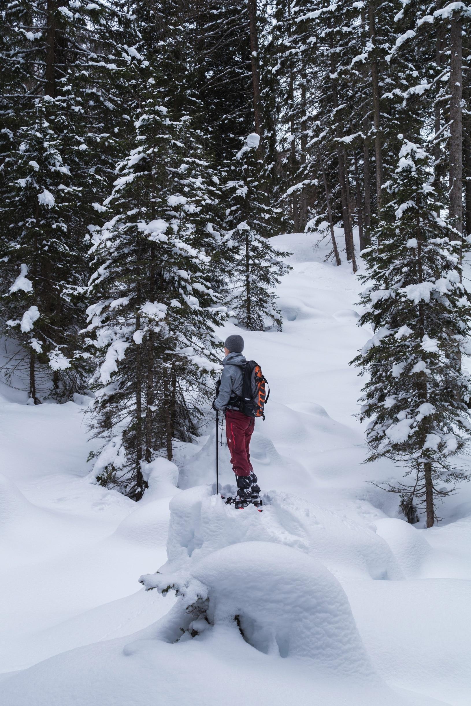 Skigebied Schlick 2000, Fulpmes, Tirol, Oostenrijk