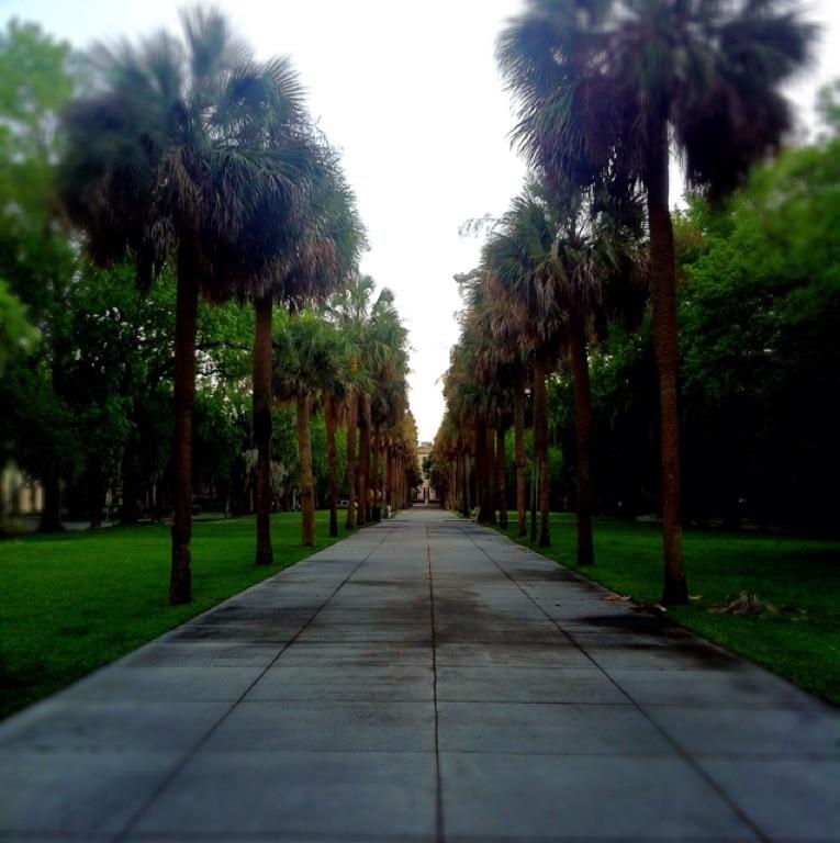 Ardsley Park-Chatham Crescent Historic District, Savannah, Georgia, United States of America