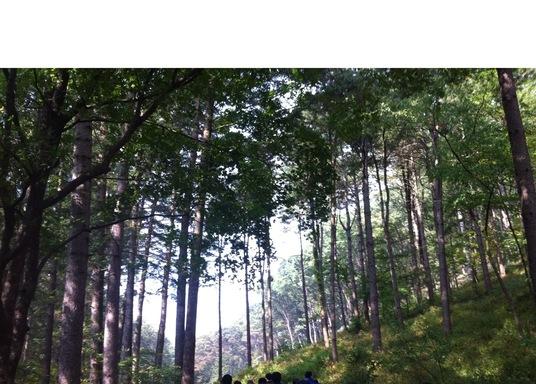 抱川, 韓國
