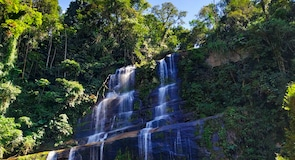 Reserva ecológica REGUA