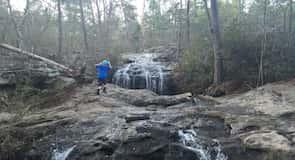 Moss Rock Reservat
