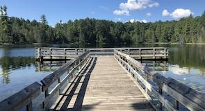 Hartwick Pines State Park (nasjonalpark)