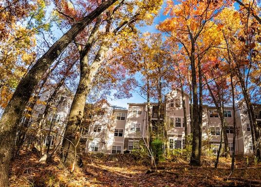 Lawrence, Massachusetts, Estados Unidos