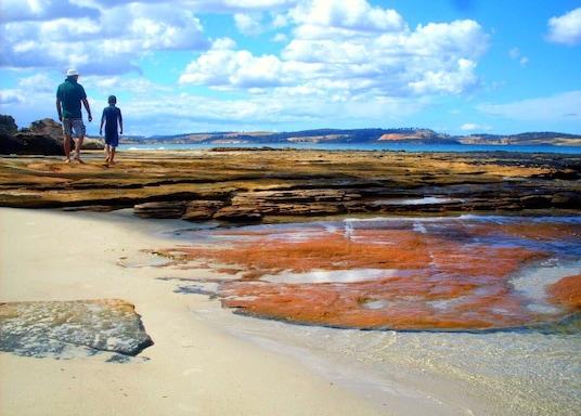 หาดสปริง, แทสมาเนีย, ออสเตรเลีย
