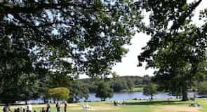 สวนสาธารณะทิลเกต