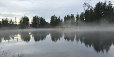A soothing afternoon mist settles over Lake Killarney, on the boundary between the towns of Auburn and Federal Way, Washington.