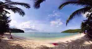 Playa Salad