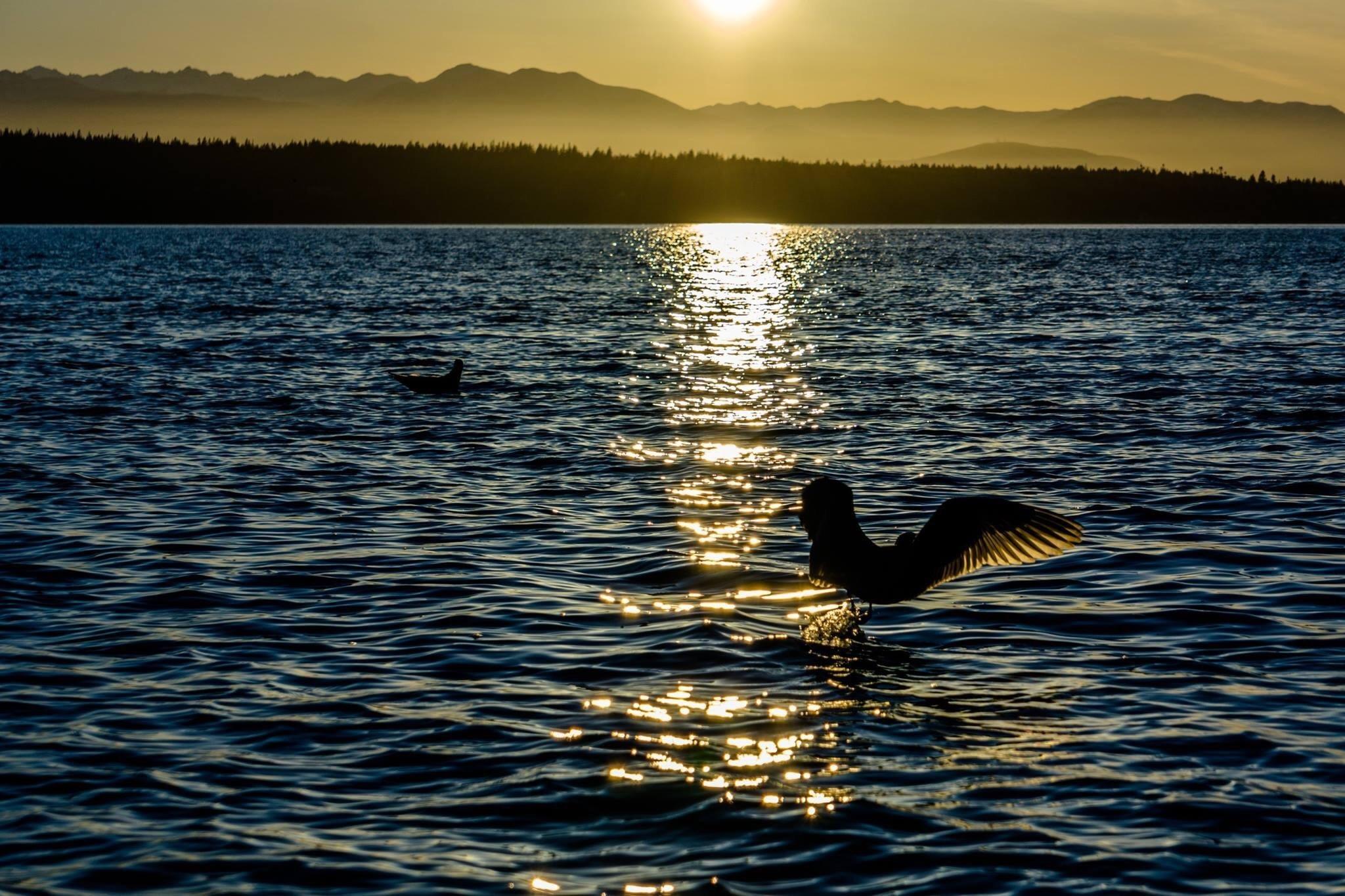 Camano Island State Park, Camano Island, Washington, United States of America