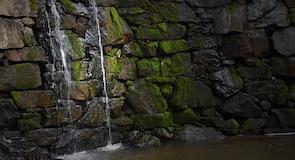 Taman Cedarock
